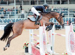'Full steam ahead' for Royal Windsor Horse Show