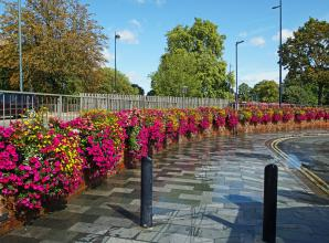 The Big Picture: The flowers at the top of West Street by Barry Clarke
