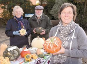 Attendees treated to pumpkin and squash displays in Twyford