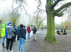Walkers find out about trees in Dinton Pastures Country Park