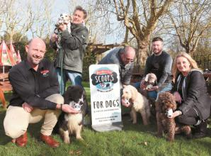 Dog-friendly ice cream launches at Maidenhead cafe