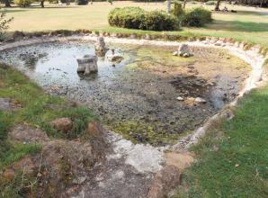Kidwells Park ponds to be cleaned and re-filled
