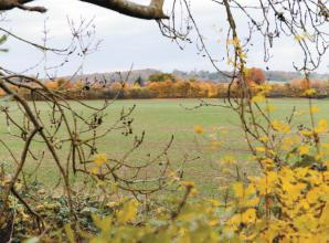 Consultation held over primary school and 330 homes at Spencer's Farm