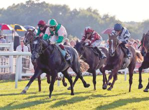 Windsor Racecourse cancel meetings to carry out essential work on track