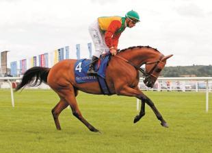 Arabian racing comes to Royal Windsor Racecourse