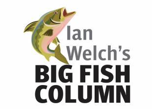 Big Fish Column: Barbel back on the menu in River Loddon